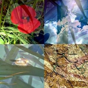 elementi della primavera (studio per Dani Scaini)