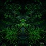 foresta010mask