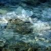 waves2011_005